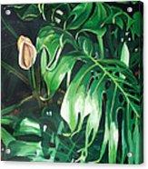Waipeo Green Acrylic Print