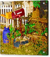 Waiting For Mail Acrylic Print