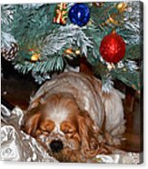 Waiting For Santa Acrylic Print