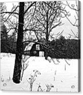 Waiting For The Barn Dance 3 Acrylic Print