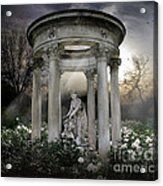 Wake Up My Sleepy White Roses - Sunlight Version Acrylic Print