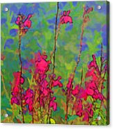Wake Up Smell The Flowers Acrylic Print