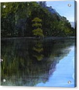 Wakulla Skimmers Acrylic Print