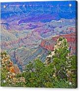 Walhala Overlook On North Rim Of Grand Canyon-arizona  Acrylic Print