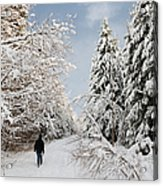 Walk In The Winterly Forest With Lots Of Snow Acrylic Print