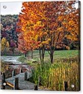 Walk Into Fall Acrylic Print