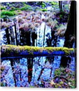 Walk Right Into The Nature's Fairytale With Me  Acrylic Print