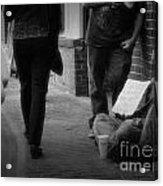 Walk On By Acrylic Print