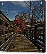 Walk The Line Acrylic Print by Scott Allison