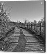 Walk This Way... Acrylic Print