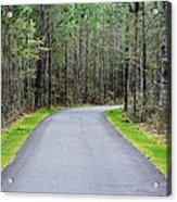 Walk Through The Forest Acrylic Print