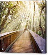 Walk With Me Acrylic Print