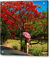 Walking Along The Road. Mauritius Acrylic Print
