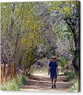 Walking Acrylic Print