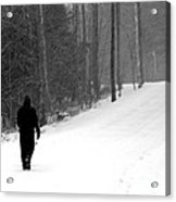 Walking In A Winter Wonderland Acrylic Print