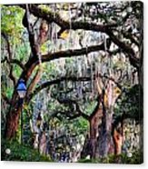 Walking In Forsyth Park Acrylic Print