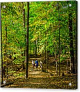 Walking In The Forest Acrylic Print