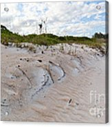 Walking In The Sand Acrylic Print
