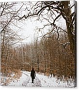 Walking In The Winterly Woodland Acrylic Print by Matthias Hauser