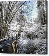 Walking Into The Infrared Jungle 2 Acrylic Print