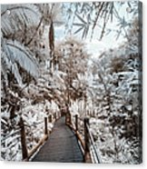 Walking Into The Infrared Jungle 3 Acrylic Print