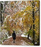 Walking Into Winter - Beautiful Autumnal Trees And The First Snow Of The Year Acrylic Print
