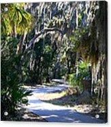 Walking Path Acrylic Print