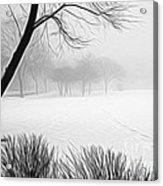 Walking Through A Winter Wonderland Acrylic Print