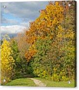 Walking Through Autumn Acrylic Print