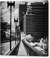 Walking To Knoxville Acrylic Print