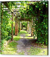 Walkway Acrylic Print by Carey Chen