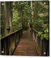 Walkway Into Paradise Acrylic Print