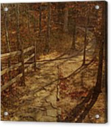 Walkway Through The Forest Acrylic Print