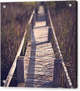Walkway Through The Reeds Appalachian Trail Acrylic Print by Edward Fielding