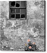 Window And Flowers Acrylic Print