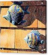 Wall Fish Acrylic Print