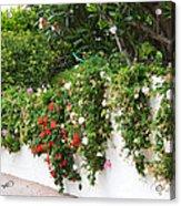 Wall Flowers Acrylic Print