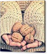 Wallnuts Acrylic Print