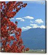 Dn5930-wallowa Valley In Fall Acrylic Print