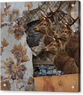 Wallpaper Stags Acrylic Print