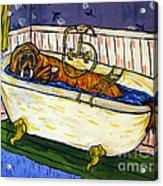 Walrus Bather Acrylic Print by Jay  Schmetz