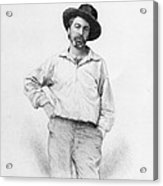 Walt Whitman Frontispiece To Leaves Of Grass Acrylic Print by American School