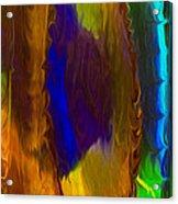Wandering Eye Acrylic Print