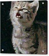Wanna Be A Tiger Acrylic Print