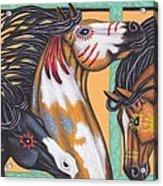 War Horse Family Acrylic Print