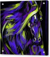 War Horse Acrylic Print