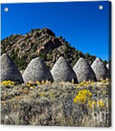 Wards Charcoal Ovens Acrylic Print by Robert Bales