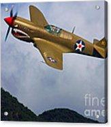 Warhawk Curtiss P-40  Acrylic Print