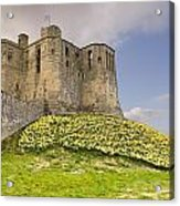 Warkworth Castle With  Daffodils Acrylic Print
