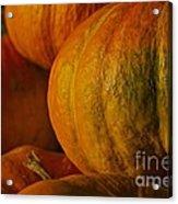 Warm Autumn Color Palette.  Acrylic Print